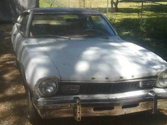 1975 seattle wa